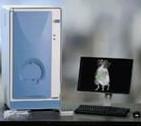 Imavita Fluoresence Molecular Tomography